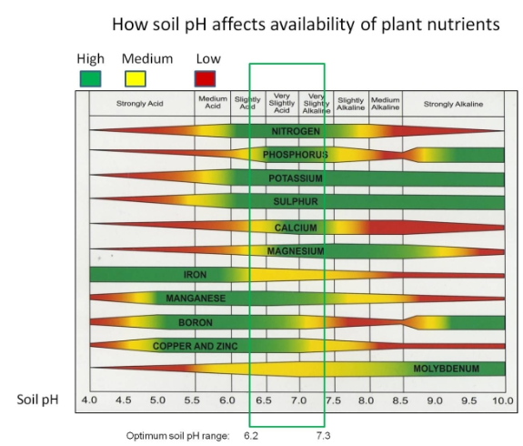 PH Chart: http://heartlandoutdoors.com/images/soil_ph_nutrient_availability.jpg