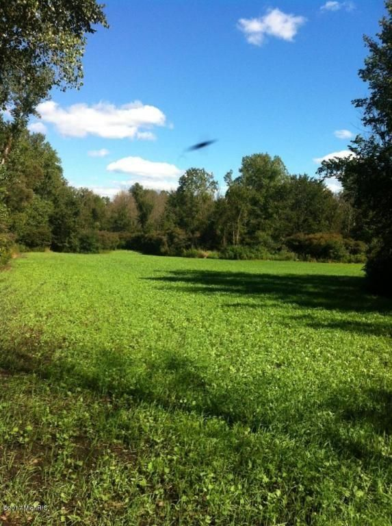 Large Food Plot