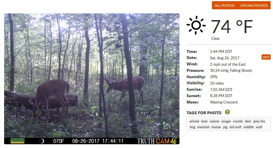 Deer Lab photo specific weather data.