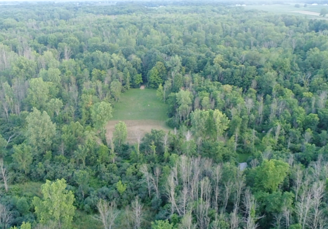 116 acres of Pure Michigan hunting land.